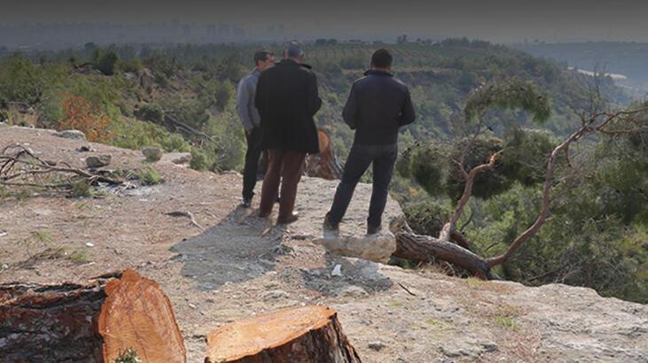 Ağaç kıyımı yaptığı iddia edilen Mehmet Şenol tutuklandı!