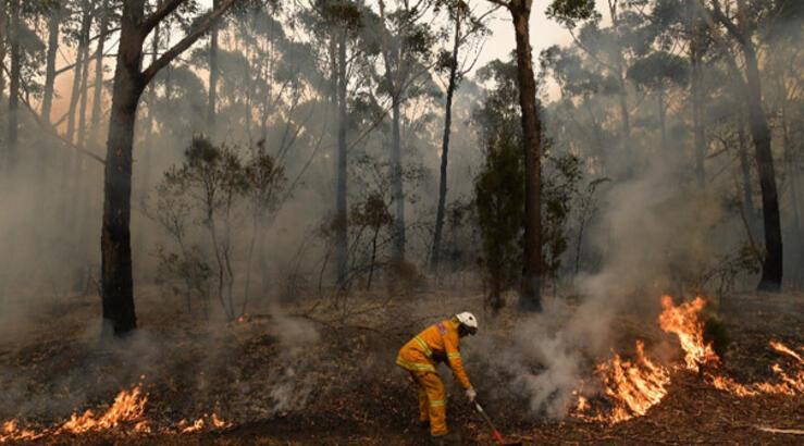 Son dakika: Avustralya yangını devam ediyor... Avustralya'daki yangının nedeni ne? İşte son durum