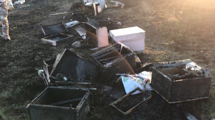 30 kovan arı alev alev yandı!