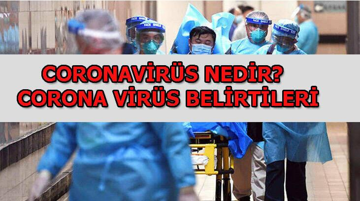 Coronavirüs nedeniyle hayatını kaybedenlerin sayısı 213'e yükseldi! Coronavirüs nedir, nasıl bulaşır, belirtileri nelerdir?