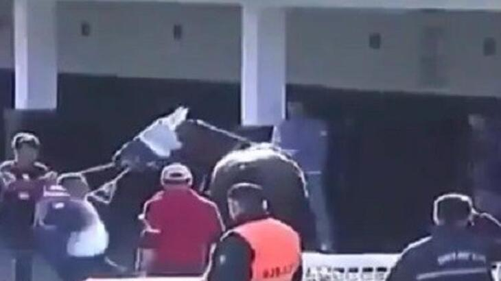 Yarış atına şiddet canlı yayına yansıdı!