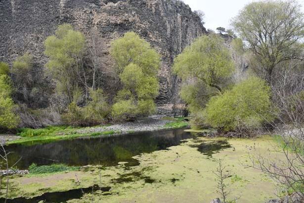 Sönmüş lavlar arasında antik güzellik Adala