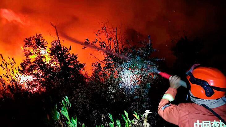 Çin'de orman yangını: 19 ölü