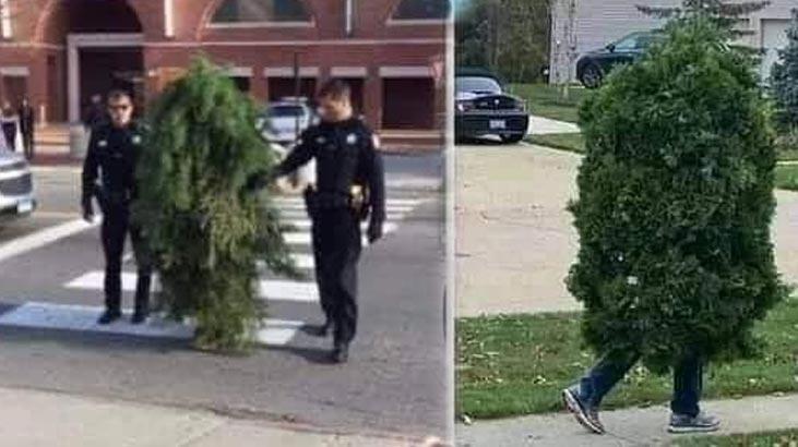 Sokağa çıkma yasağını ağaç kılığında deldiği iddia edilmişti... İşte gerçek!