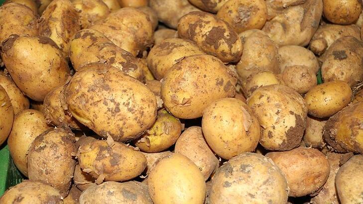 'Endişelenmeyin, patates sıkıntımız olmaz'