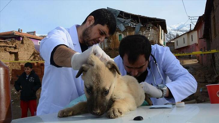 Veterinerler açık mı? Sokağa çıkma yasağında veterinerler çalışacak mı?