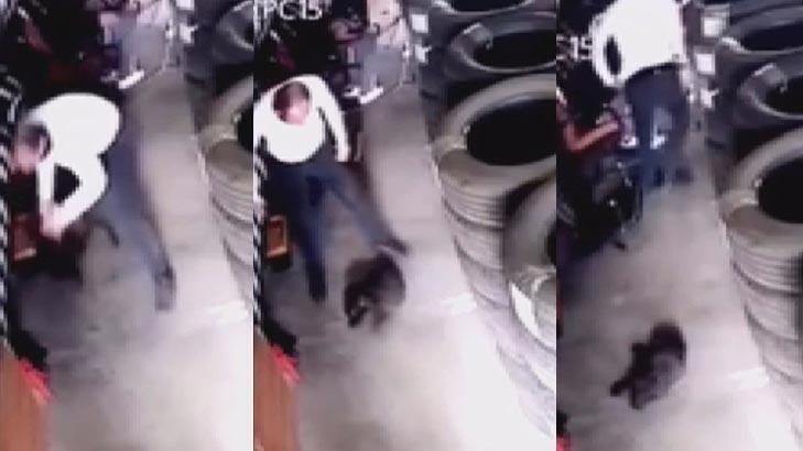 Yavru köpeği yere vurarak öldürmüştü! Kan donduran olayda karar verildi