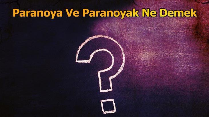 Paranoya Ve Paranoyak Ne Demek? Tdk'da Paranoya Kelimesinin Anlamı Nedir?