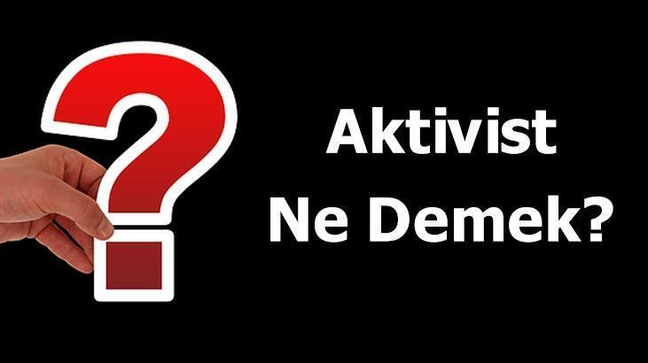 Aktivist Ne Demek? Tdk'ya Göre Aktivizm Kelimesinin Anlamı Nedir?