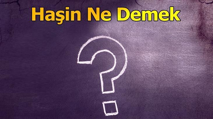Haşin Ne Demek? Tdk'da Haşinleşme Ve Haşinlik Kelimelerinin Anlamı Nedir?