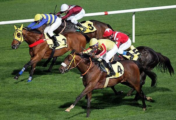 At yarışları ne zaman başlayacak?