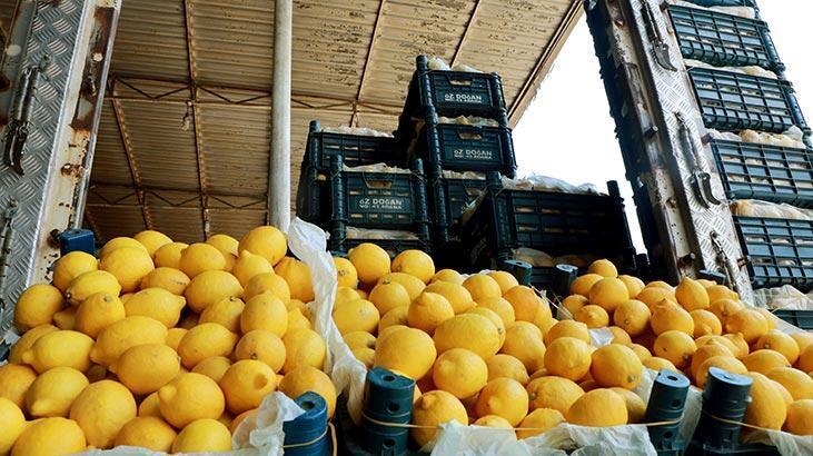 Bakan Pakdemirli müjdeyi verdi! 10 bin ton limon ihracatına izin verildi