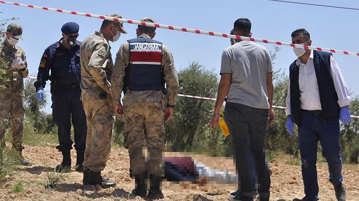 Zeytin bahçesinde ceset bulundu