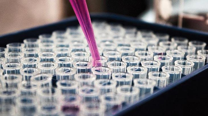 Corona virüs için flaş antikor iddiası: 4 gün içinde vücuttan atıyor