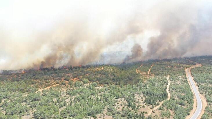 KKTC'de korkutan yangın! Alevler yayılıyor