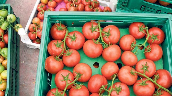 Rusya ile domates kotası zirvesi