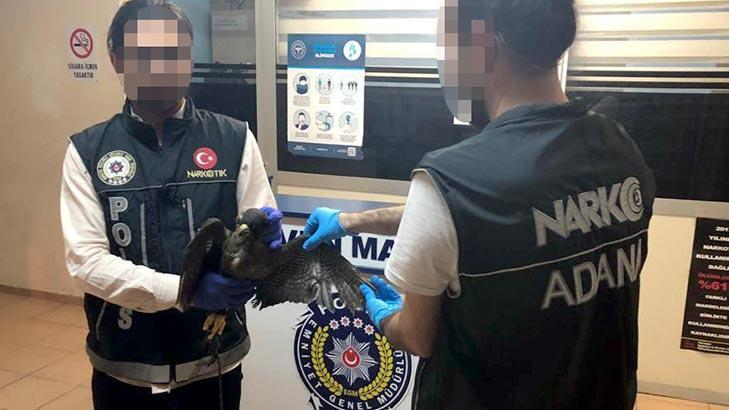 Ölü kuş bulunan otomobildeki 2 kişiye ceza kesildi!