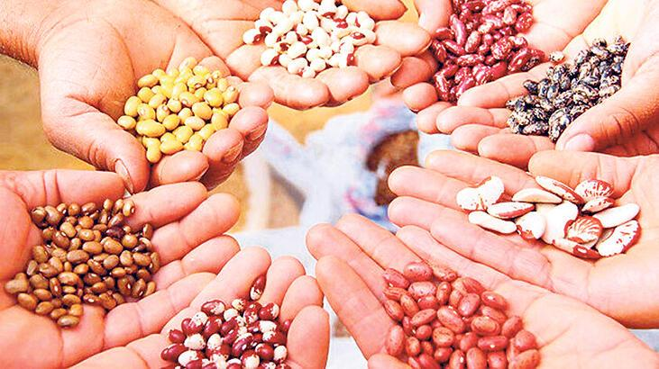 'Salgın gıda milliyetçiliği yarattı'
