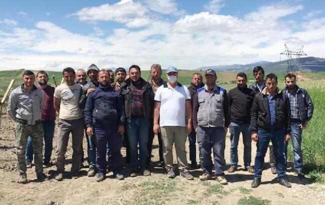 Yalvaç'ta tarım alanlarını don vurdu