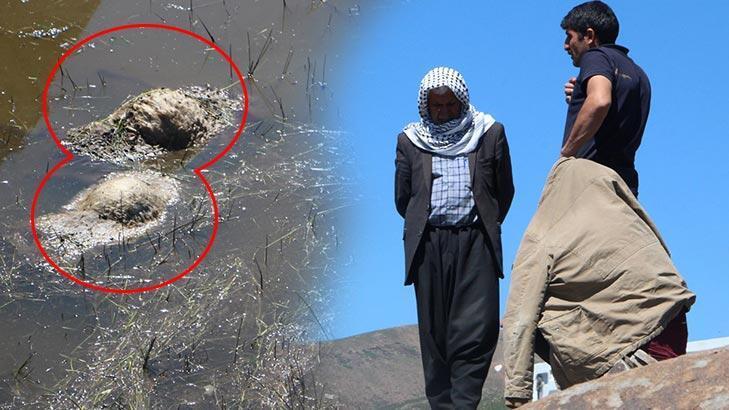 Son dakika... Kamyon gölete devrildi! 2 kişi yaralandı, 80 koyun telef oldu