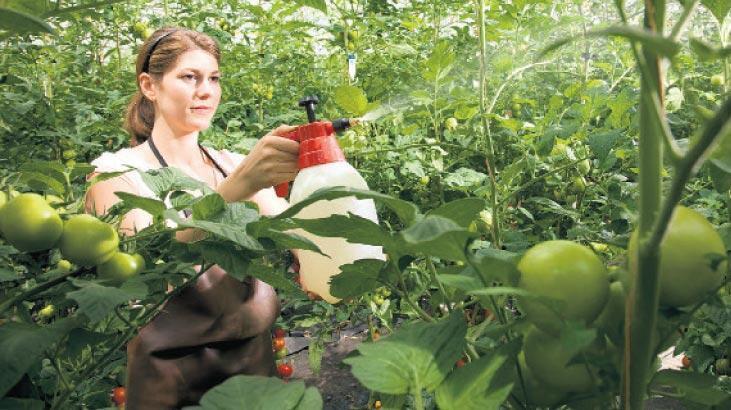 16 tarım ilacına kademeli yasak
