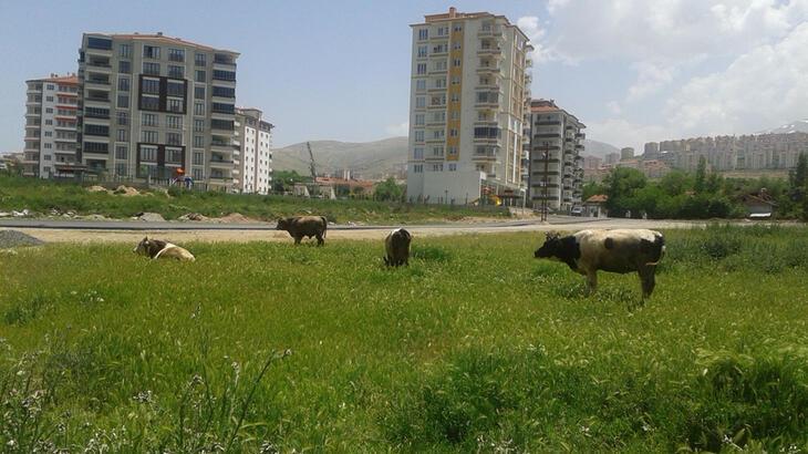 Son dakika... Çiftçi proje başvuruları 7 Temmuz'a uzatıldı