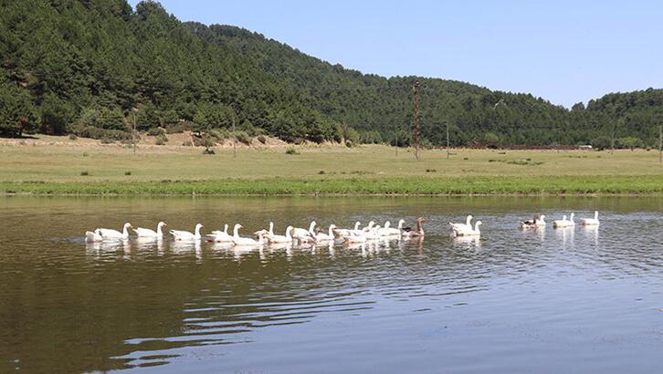 Yayla Gölü korumaya alındı