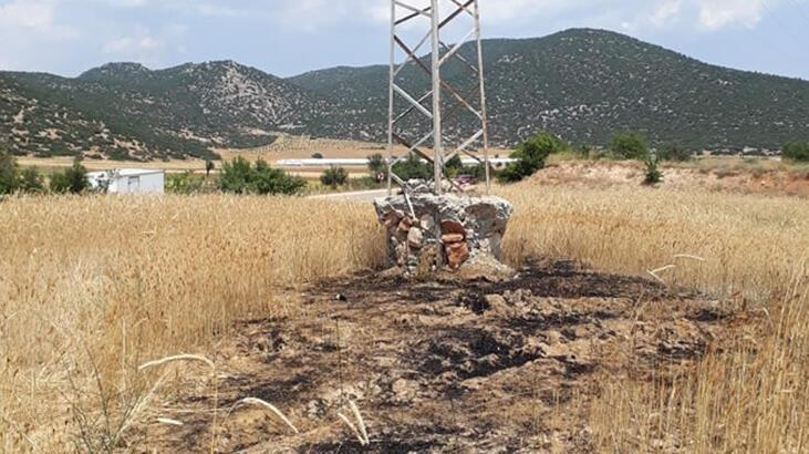 Antalya'da yanarak elektrik direğinden yere düşen kargalar, tarlayı tutuşturdu