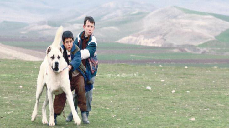 'Sivas'  MUBİ'de