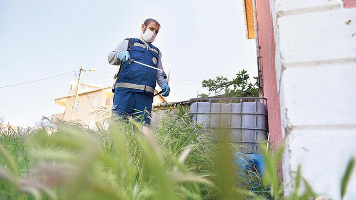 İstanbullular en çok  'sivri'den yakınıyor