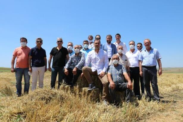 Silivri'de çiftçiye ücretsiz arpa tohumu desteği