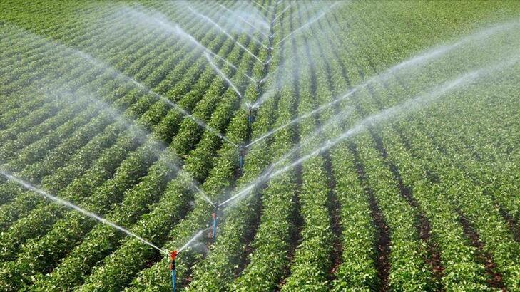 'Çatlamış topraklar' suya kavuşunca üretim de çiftçinin morali de arttı