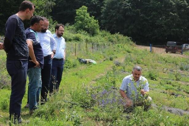 Bursa Büyükşehir Belediyesi,  çiftçiye destek olmaya devam ediyor