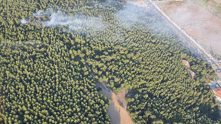 İzmir'de orman yangını! Helikopterlerle müdahale edildi