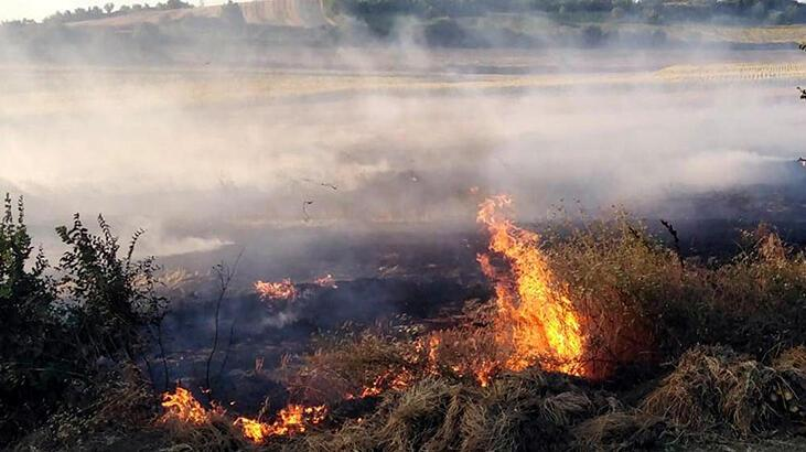 Malkara'da 50 saman balyası yandı