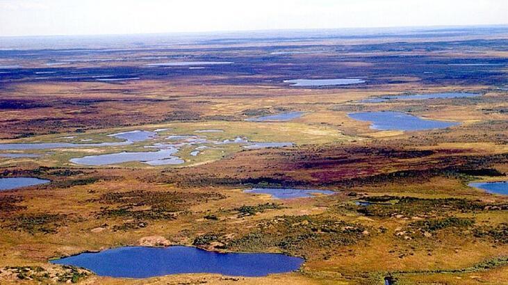 Tundra İklimi Nedir, Nerelerde Görülür? Tundra İkliminin Özellikleri Nelerdir?