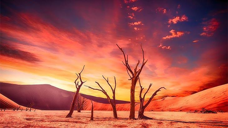 Çöl İklimi Nedir, Nerelerde Görülür? Çöl İkliminin Özellikleri Nelerdir?