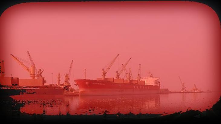 Kızıl Deniz çevre felaketiyle karşı karşıya