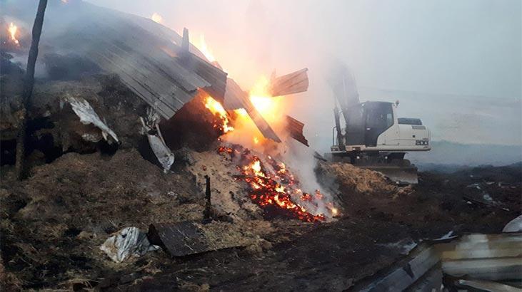 Çiftlikte korkutan yangın! 5 bin saman balyası kül oldu