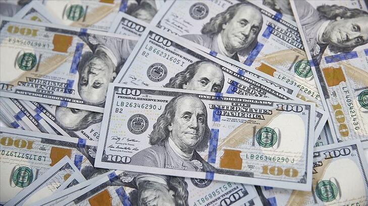 Resmi rezervler haziranda 86.3 milyar dolara indi
