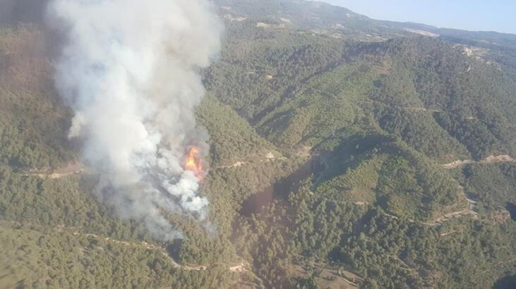 Manisa'da orman yangını! Ekipler oraya koştu