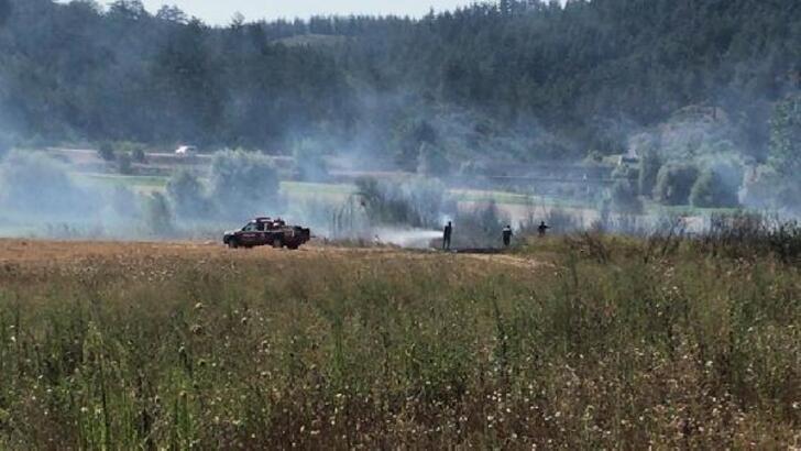 Orhaneli'de anız yangını
