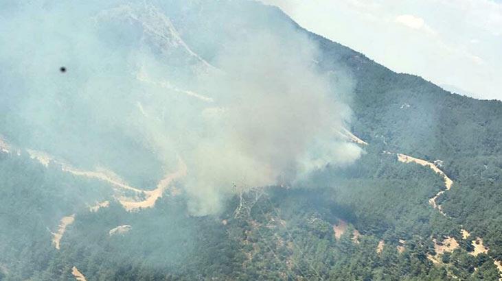 Menderes'te, ağaçlandırma sahasında yangın!