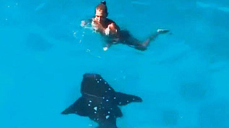 Köpekbalığıyla  burun buruna