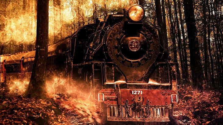 Orman yangını neden çıkar, ormanları nasıl koruruz?