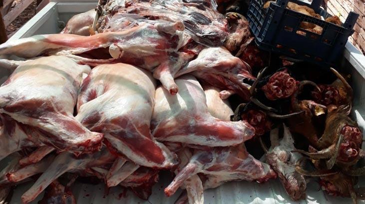 Buca'da 400 kilo kaçak et ele geçirildi!