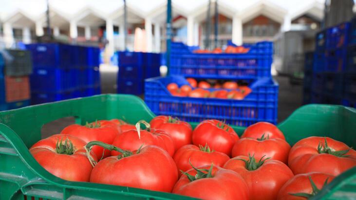 İhracatta sebze ve meyve rekoru