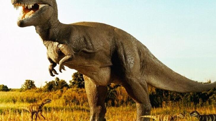 Falda Dinozor Görmek Ne Demek? Kahve Falında Dinozor Şekli Çıkması Ne Anlama Gelir?