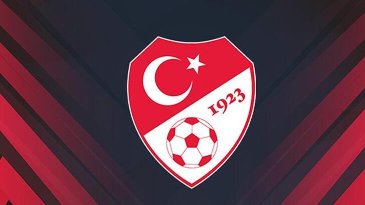 Türkiye Futbol Federasyonu, Metin Oktay'ı andı