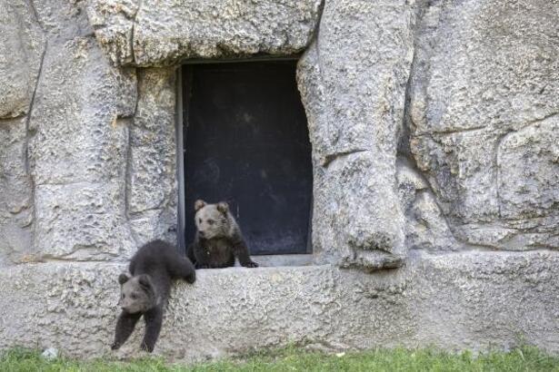 Doğa parkı, hijyen ve temizlik için pazartesi günleri ziyarete kapatılacak